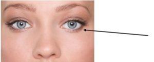 waterlijn 300x122 - Make-up tips voor brillendragers